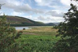 St Mary's Loch Spring